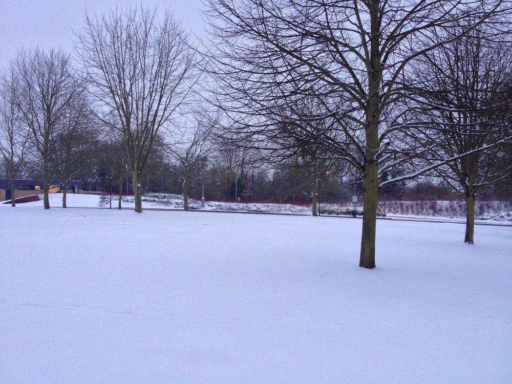 Snow UH