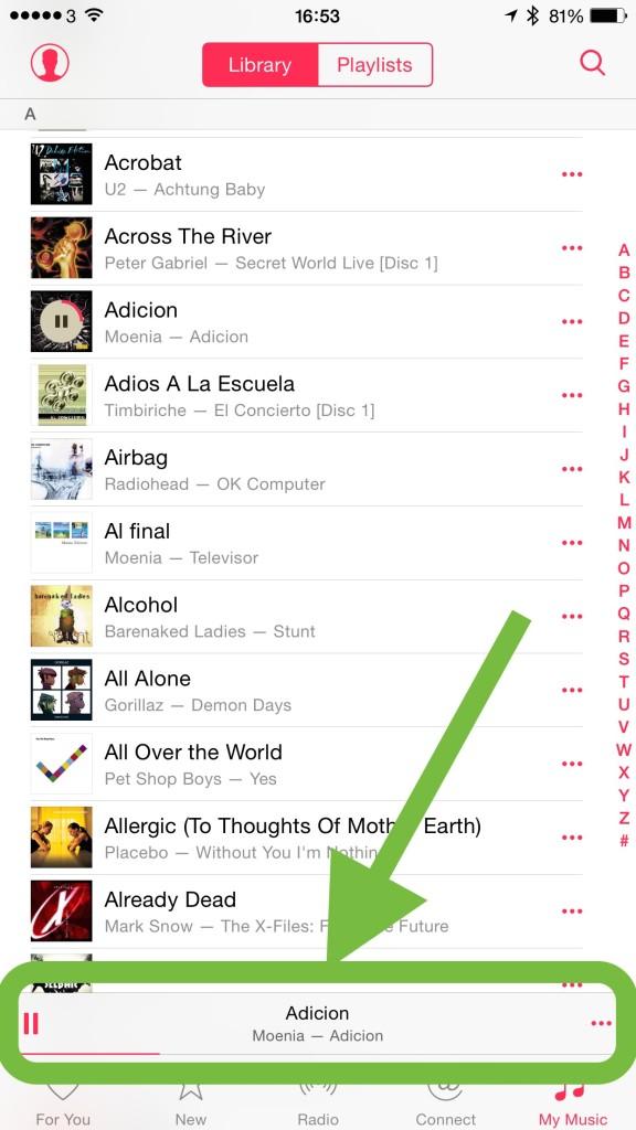 iTunes Shuffle 1